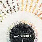 waterspider_SCC-1